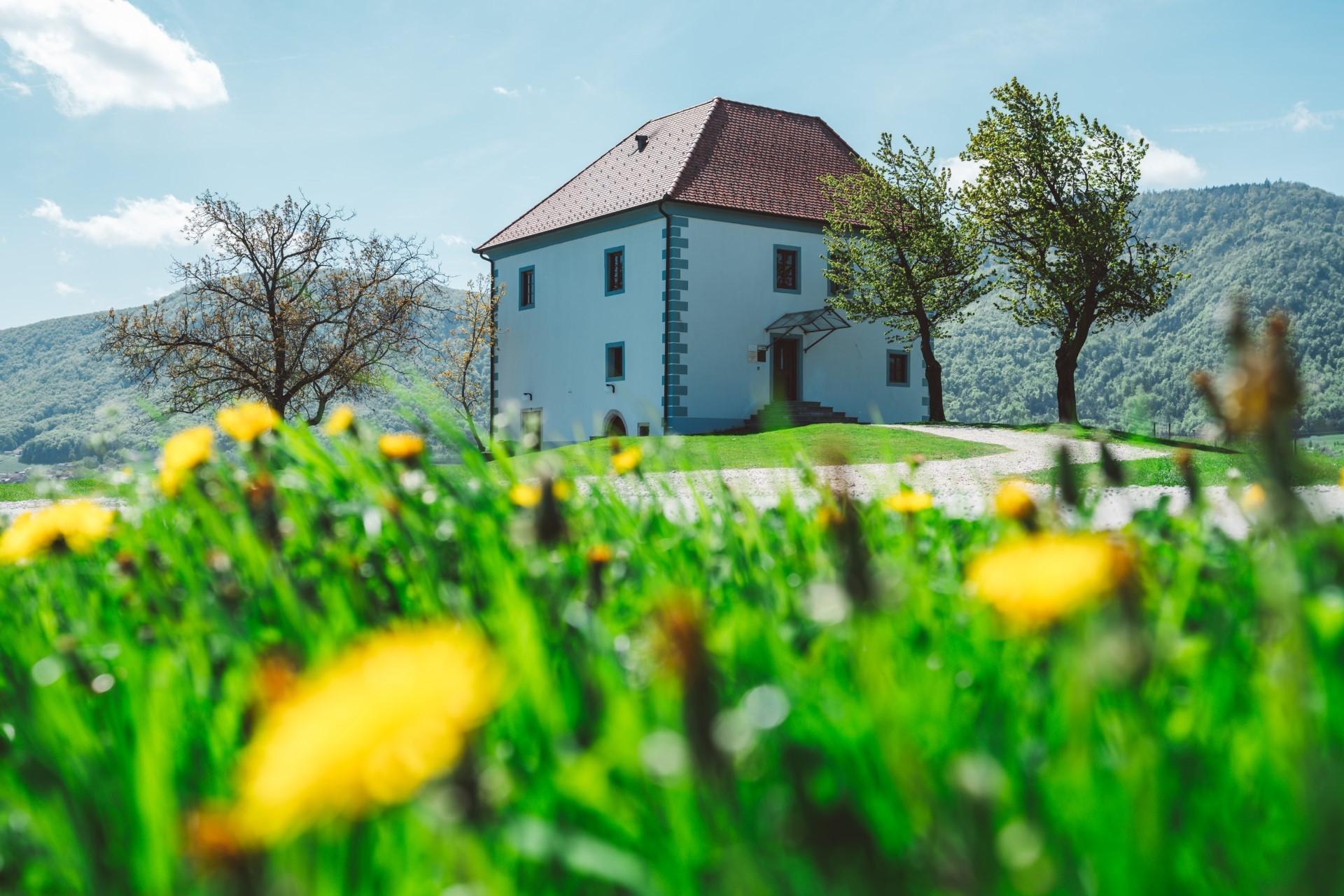 Vinogradniški dvorec - zunanjost pomladi